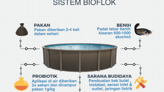 Apa Itu Bioflok