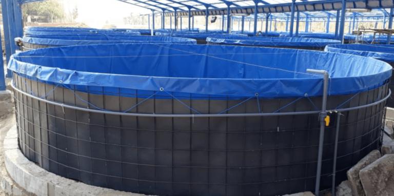 kolam bundar bioflok