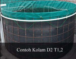 contoh kolam D2 - T,2